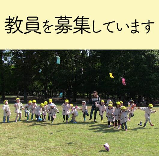 大成幼稚園 教募集